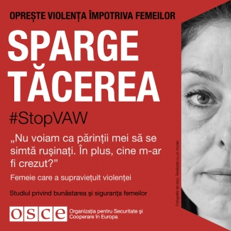 #StopVAW End The Silence Banner for Moldavia in Romanian